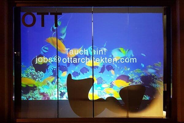Mitarbeiter*in gesucht! Ott Architekten Büroschaufenster Installation Aquarium nachts